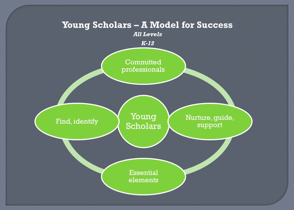 Young Scholars – A Model for Success