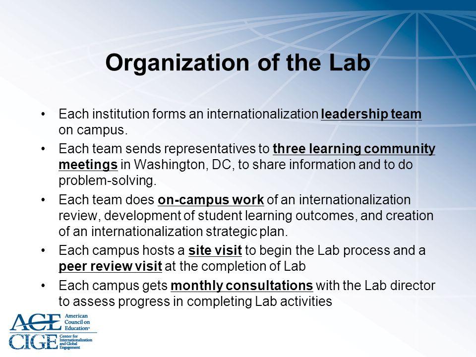 Organization of the Lab