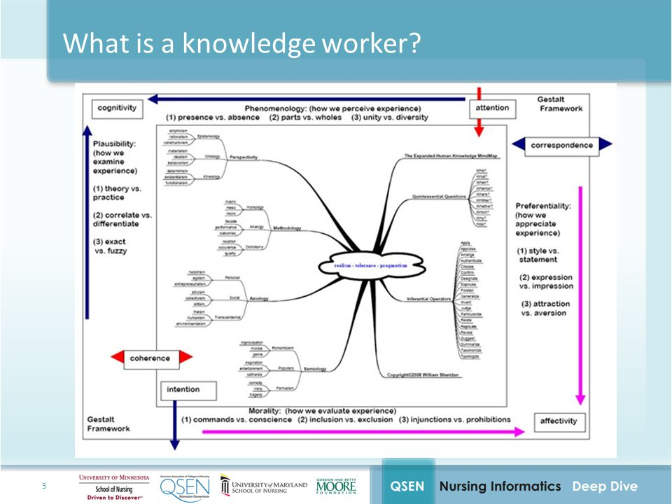 What is a knowledge worker