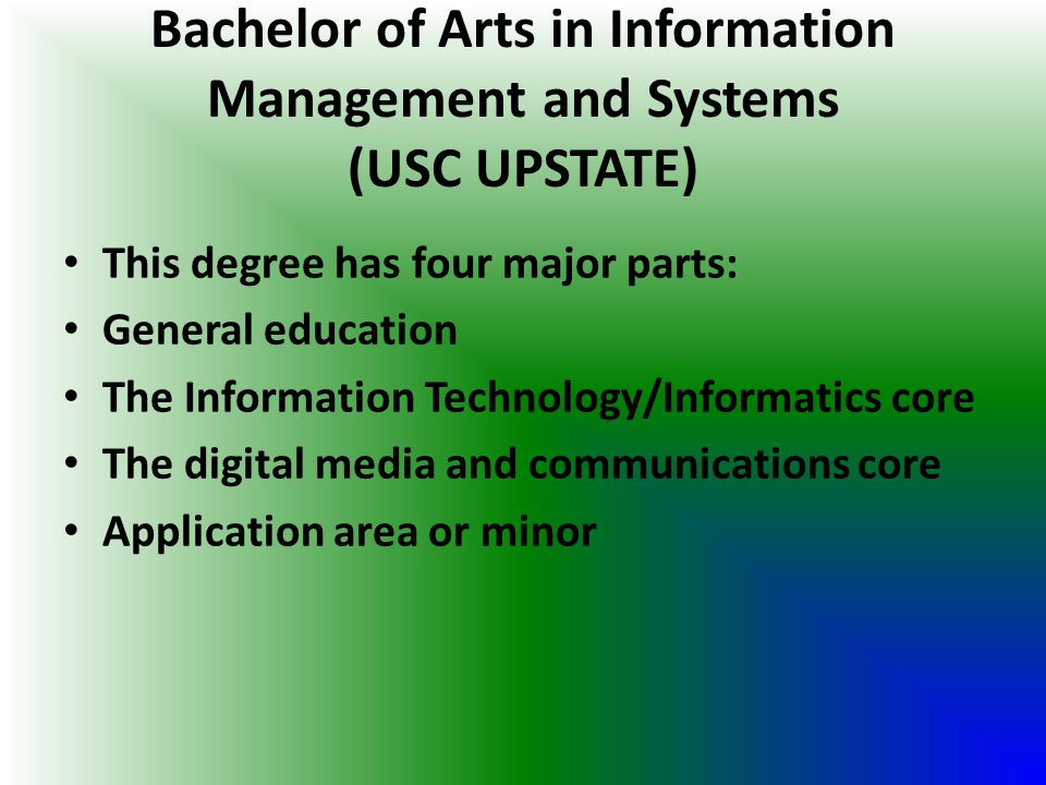 Bachelor of Arts in Information Management and Systems (USC UPSTATE)