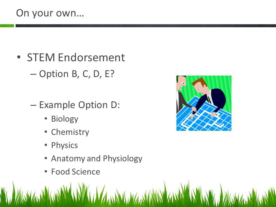 STEM Endorsement On your own… Option B, C, D, E Example Option D: