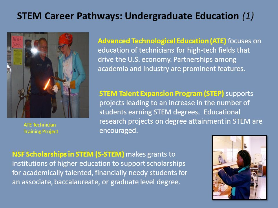 STEM Career Pathways: Undergraduate Education (1)