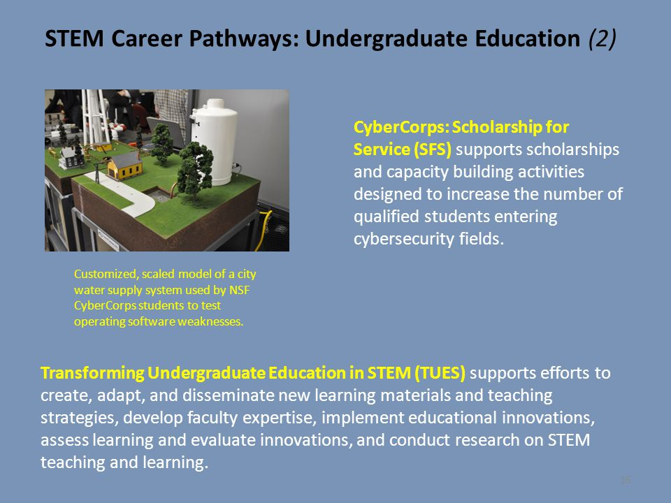 STEM Career Pathways: Undergraduate Education (2)