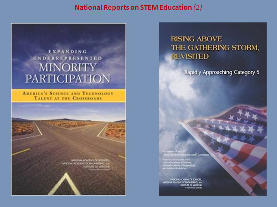 National Reports on STEM Education (2)