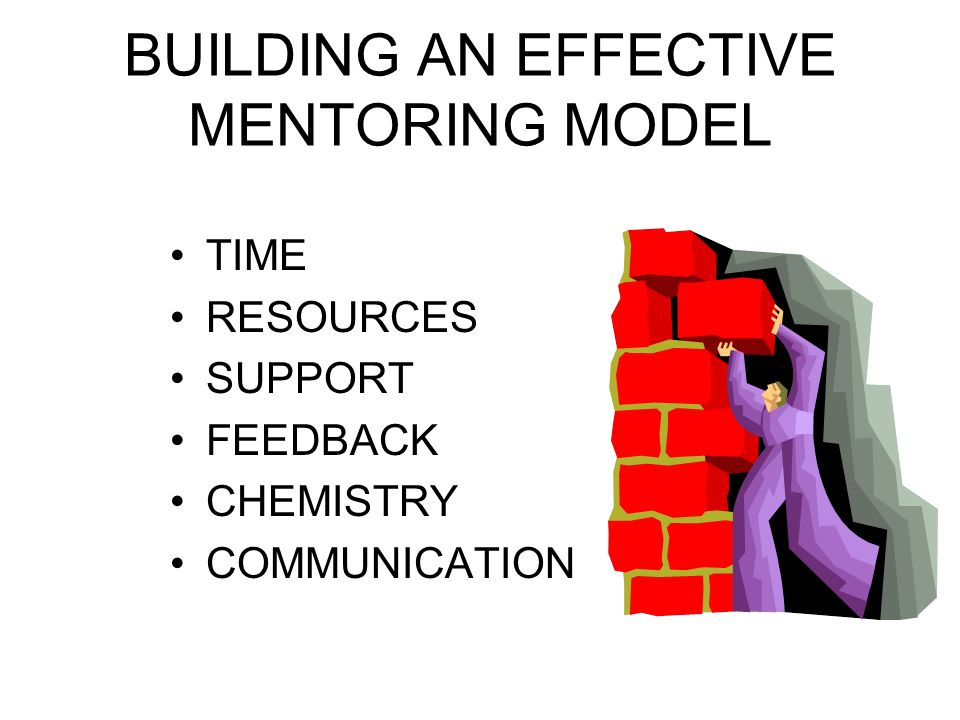 BUILDING AN EFFECTIVE MENTORING MODEL