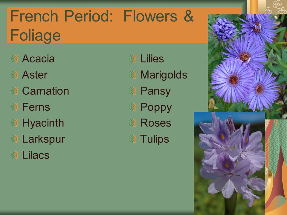 French Period: Flowers & Foliage