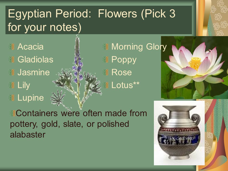 Egyptian Period: Flowers (Pick 3 for your notes)