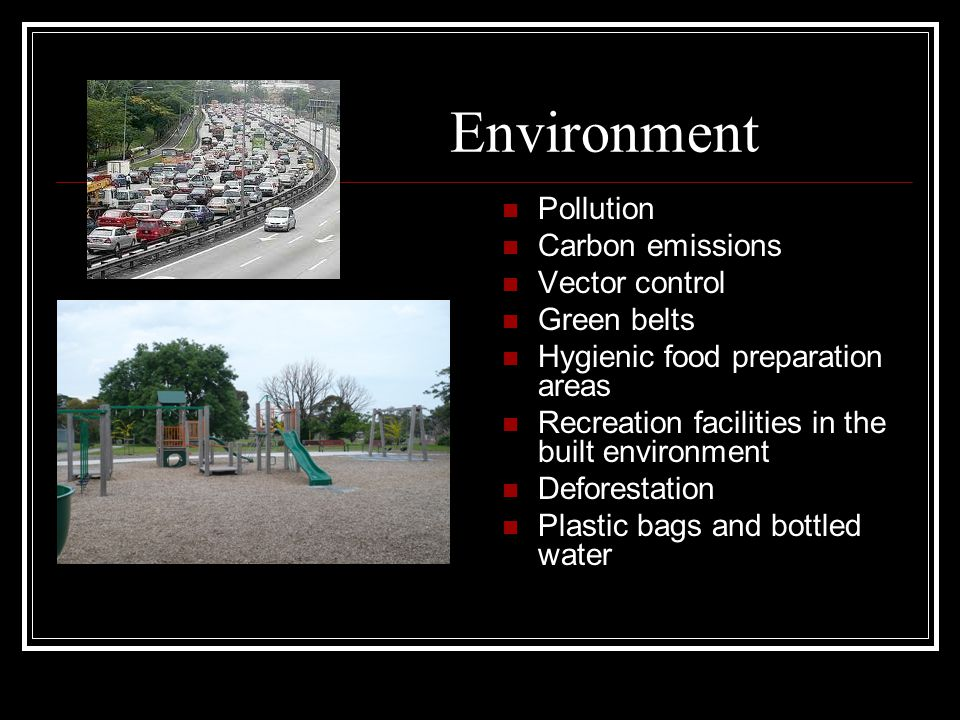 Environment Pollution Carbon emissions Vector control Green belts