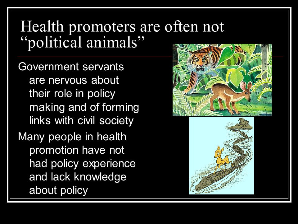 Health promoters are often not political animals