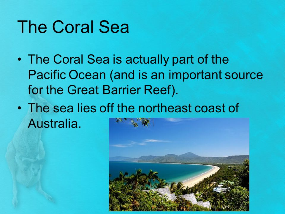 The Coral Sea The Coral Sea is actually part of the Pacific Ocean (and is an important source for the Great Barrier Reef).