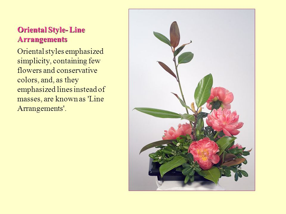 Oriental Style- Line Arrangements