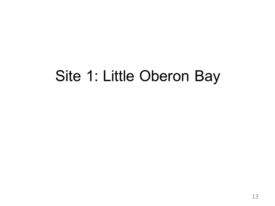 Site 1: Little Oberon Bay