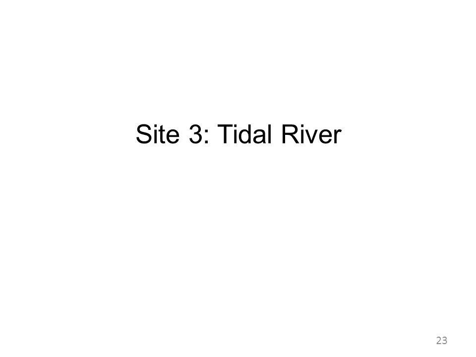 Site 3: Tidal River