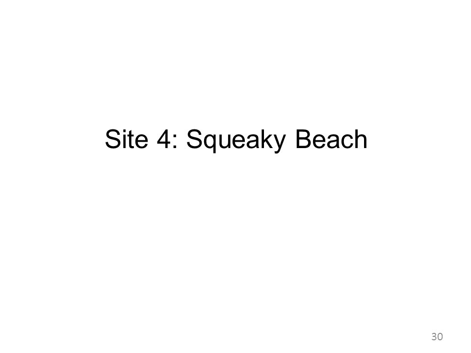 Site 4: Squeaky Beach