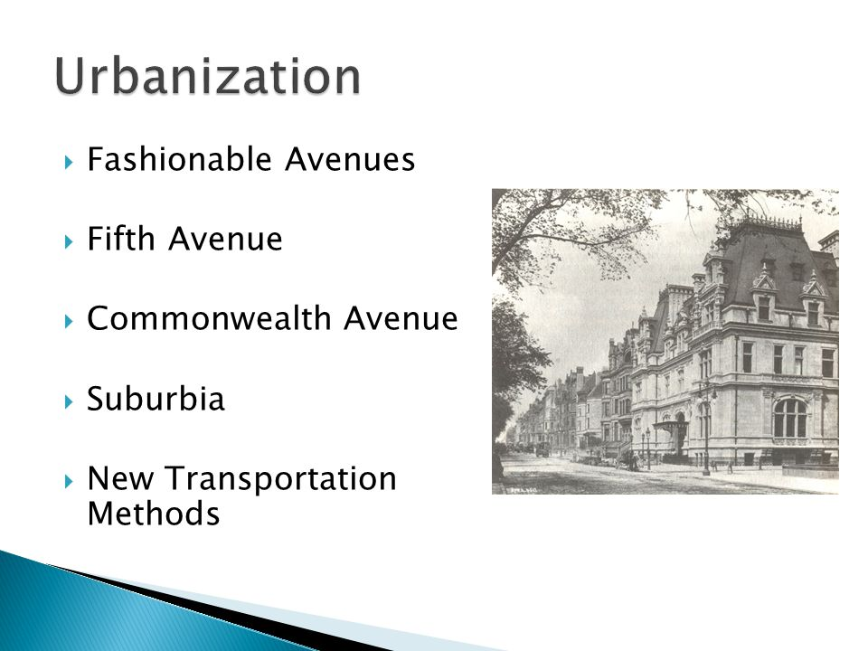 Urbanization Fashionable Avenues Fifth Avenue Commonwealth Avenue