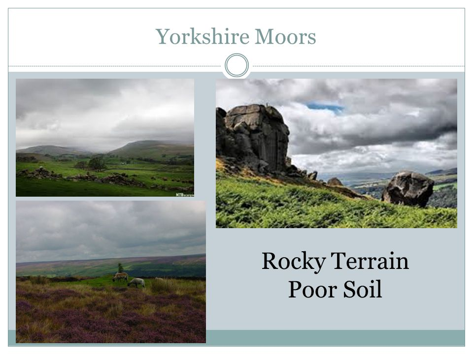 Yorkshire Moors Rocky Terrain Poor Soil