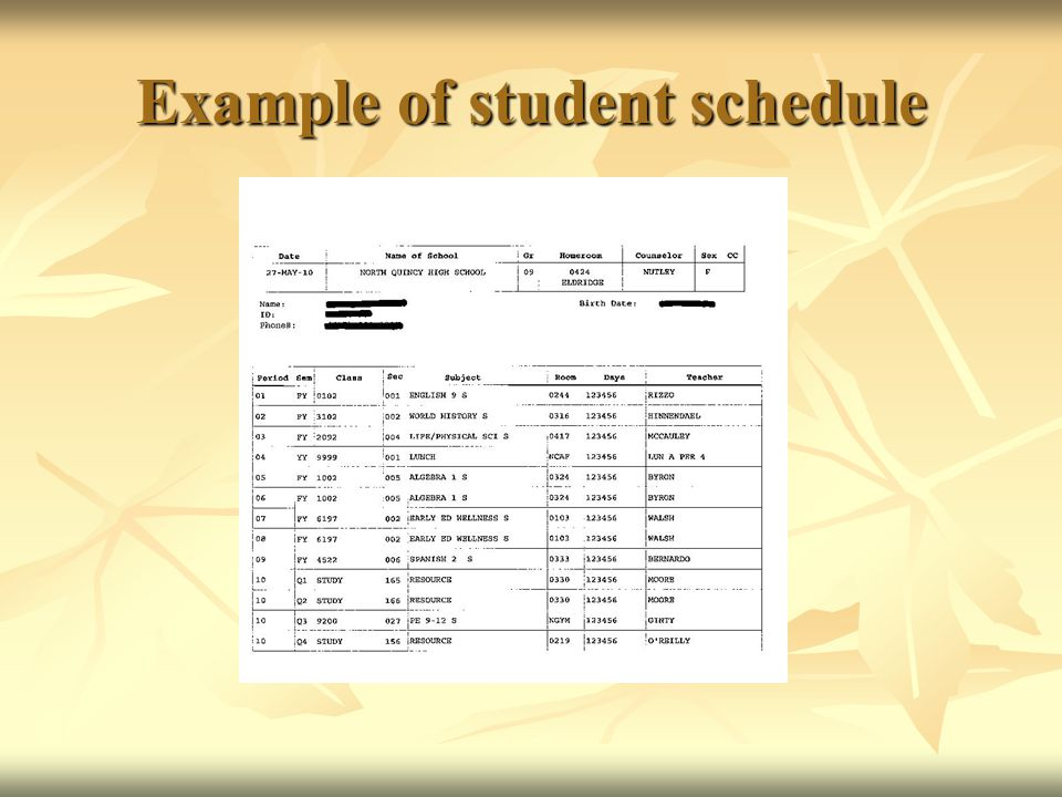 Example of student schedule