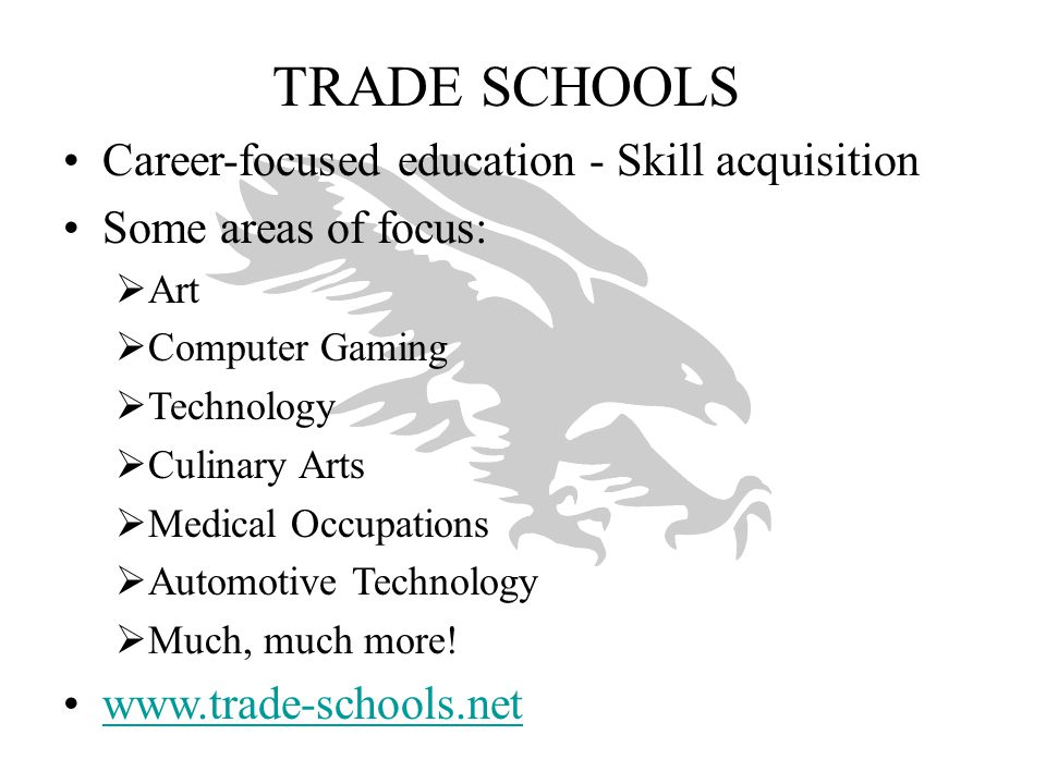 TRADE SCHOOLS Career-focused education - Skill acquisition