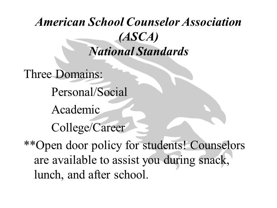 American School Counselor Association (ASCA) National Standards