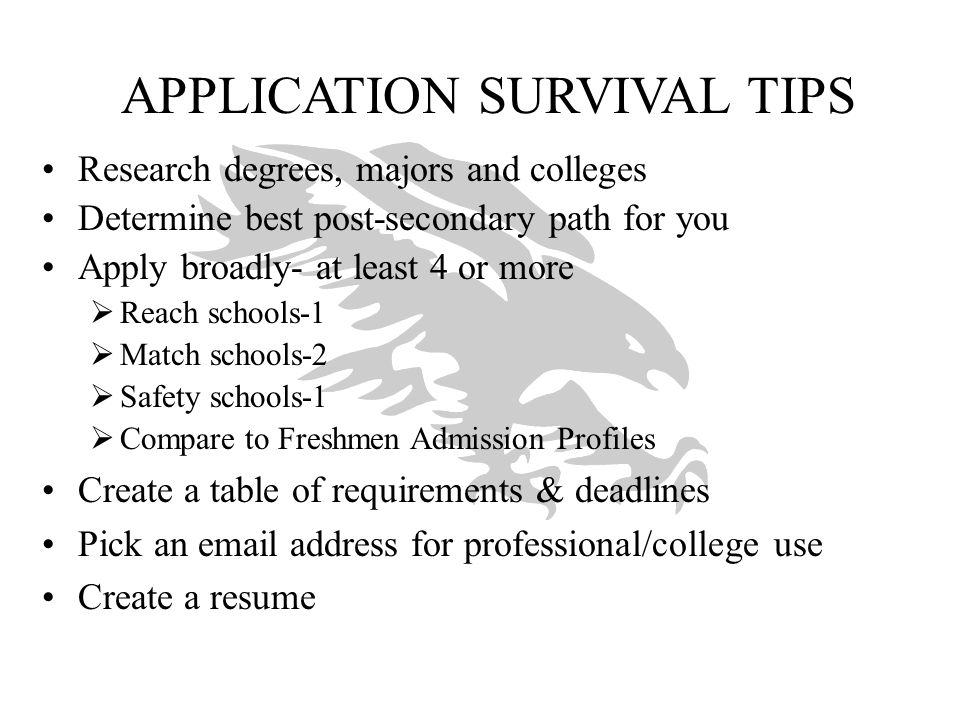 APPLICATION SURVIVAL TIPS