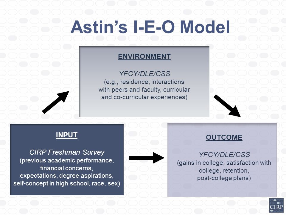 Astin's I-E-O Model ENVIRONMENT YFCY/DLE/CSS INPUT OUTCOME