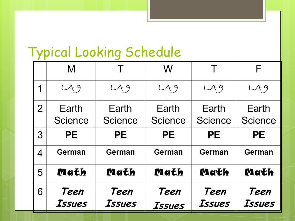 Typical Looking Schedule