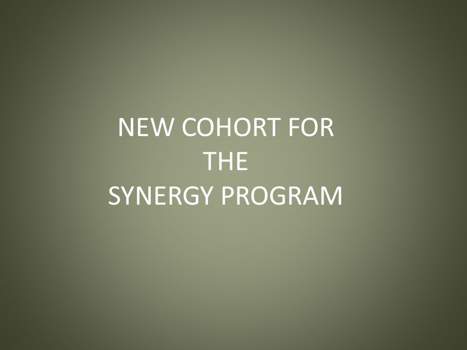 NEW COHORT FOR THE SYNERGY PROGRAM