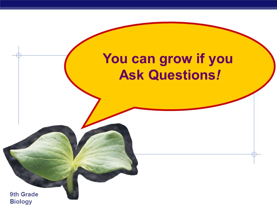 You can grow if you Ask Questions!