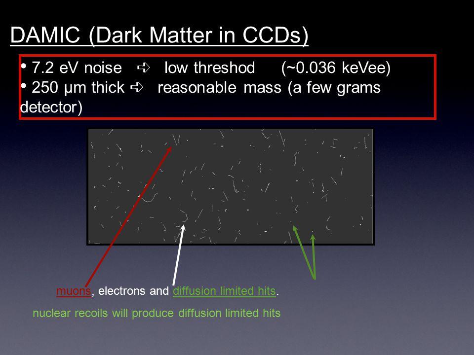 DAMIC (Dark Matter in CCDs)