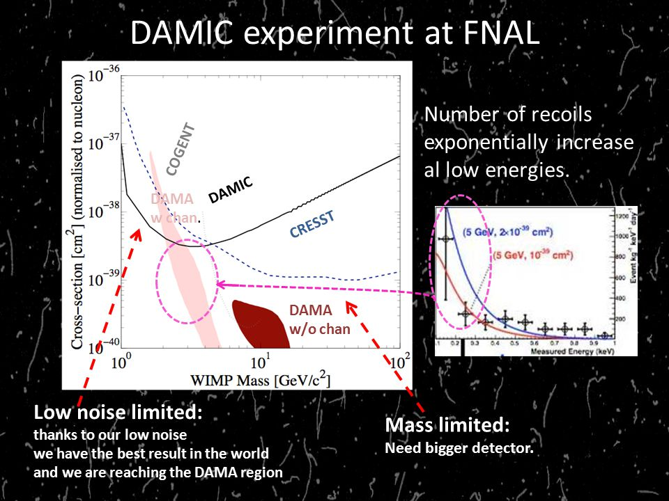 DAMIC experiment at FNAL