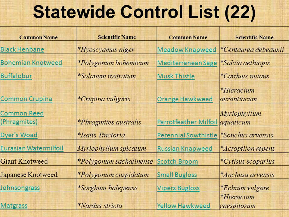 Statewide Control List (22)
