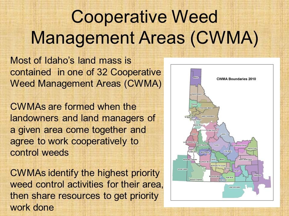 Cooperative Weed Management Areas (CWMA)