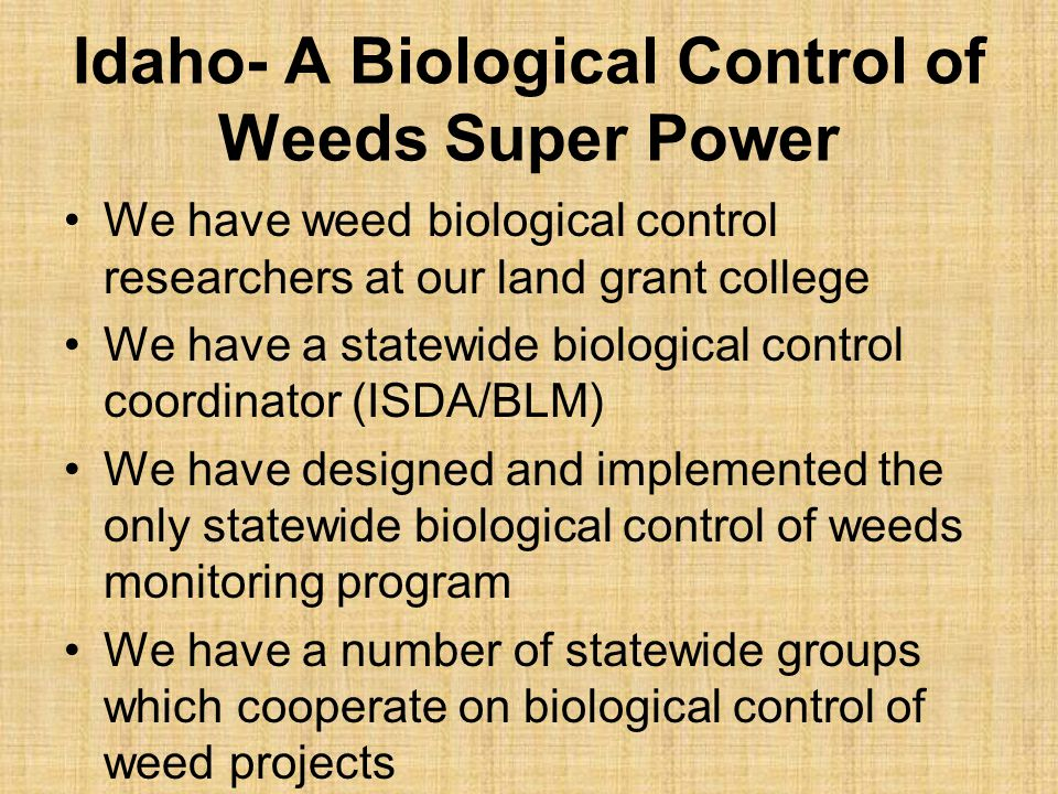 Idaho- A Biological Control of Weeds Super Power