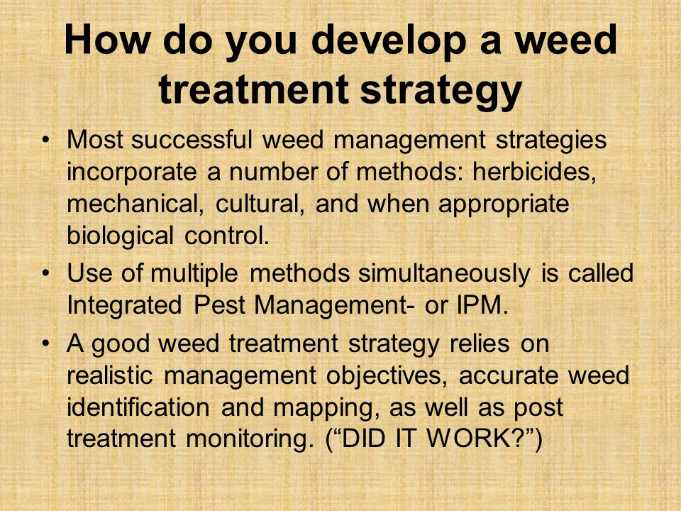 How do you develop a weed treatment strategy