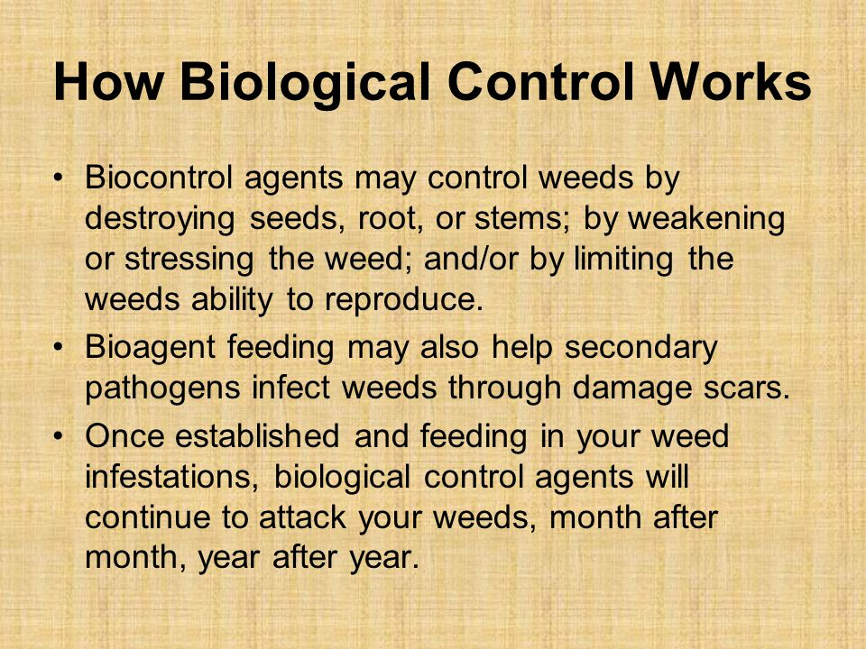 How Biological Control Works