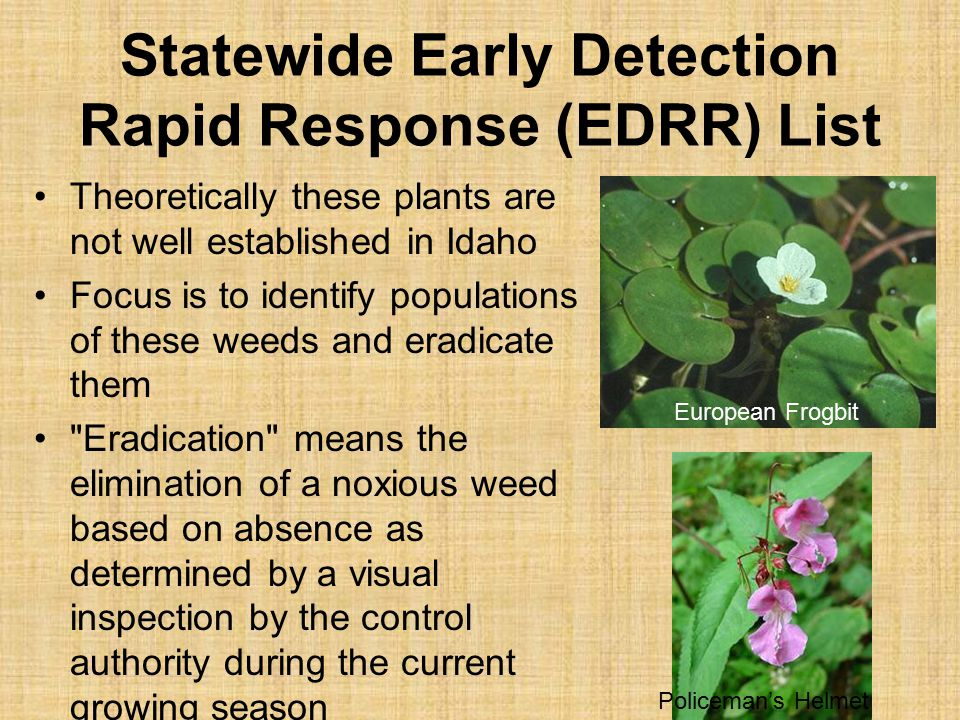 Statewide Early Detection Rapid Response (EDRR) List