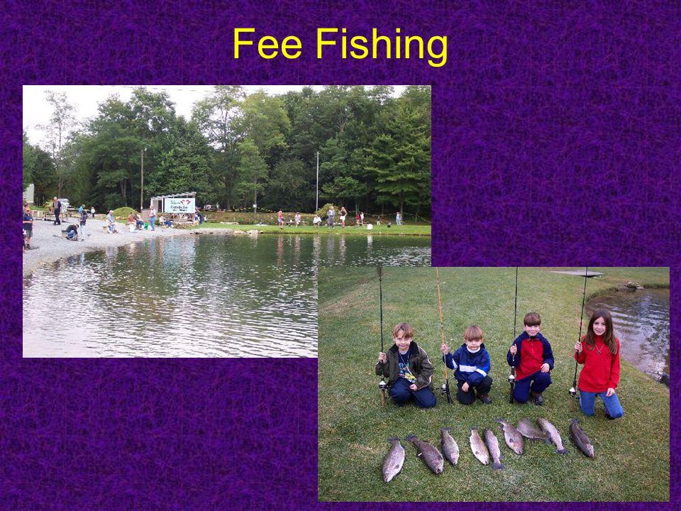 Fee Fishing