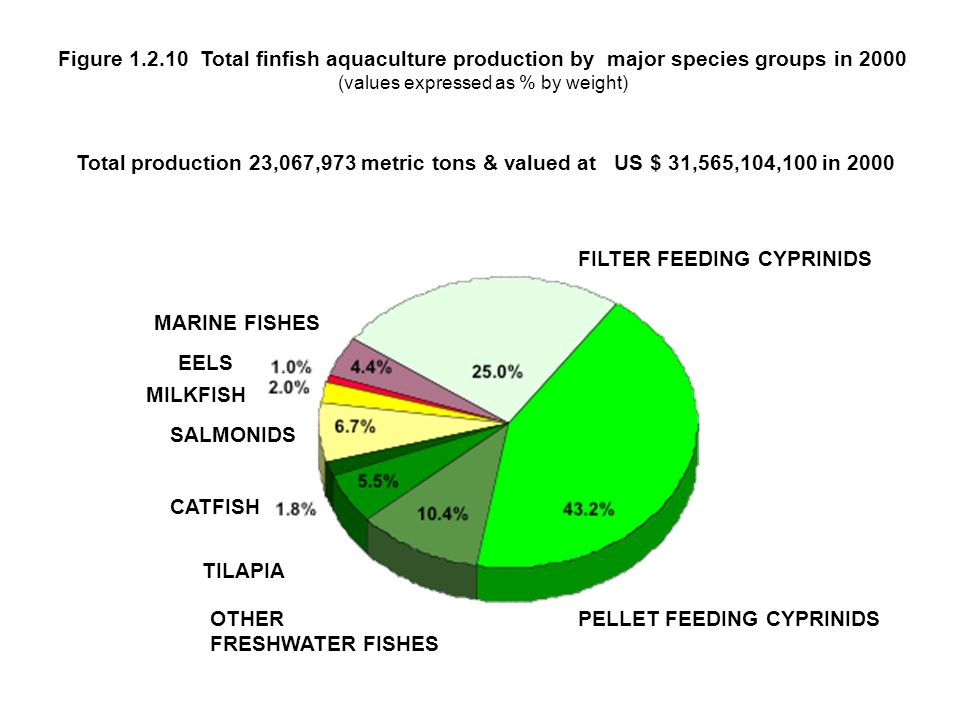Figure 1.2.10 Total finfish aquaculture production by major species groups in 2000 (values expressed as % by weight)