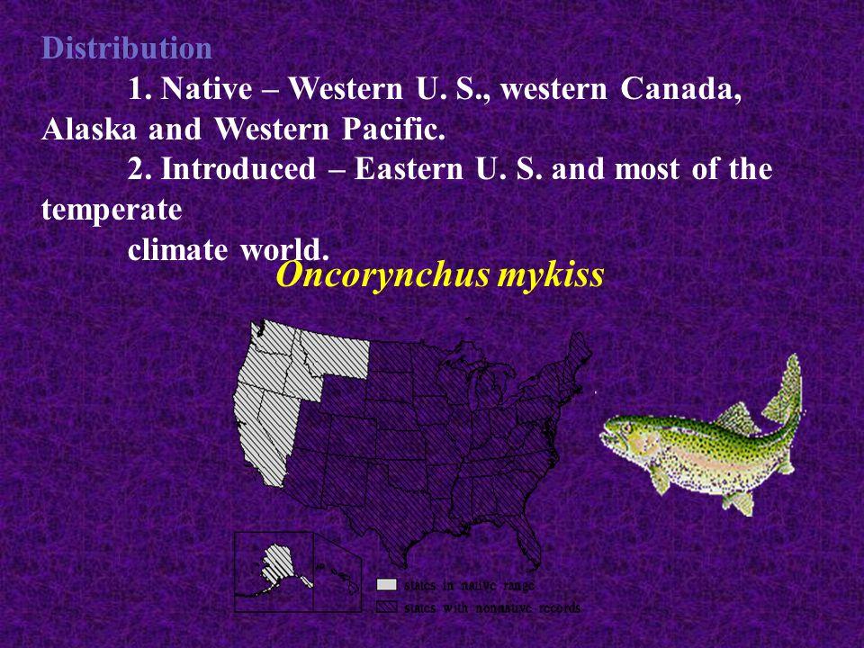 Oncorynchus mykiss Distribution