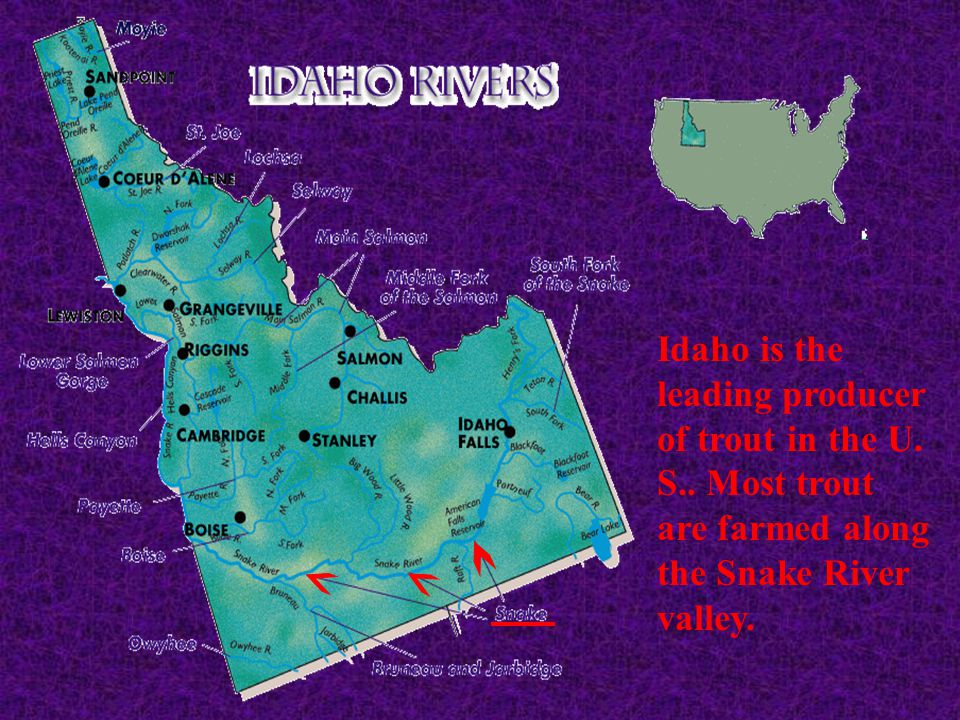Idaho is the leading producer of trout in the U. S