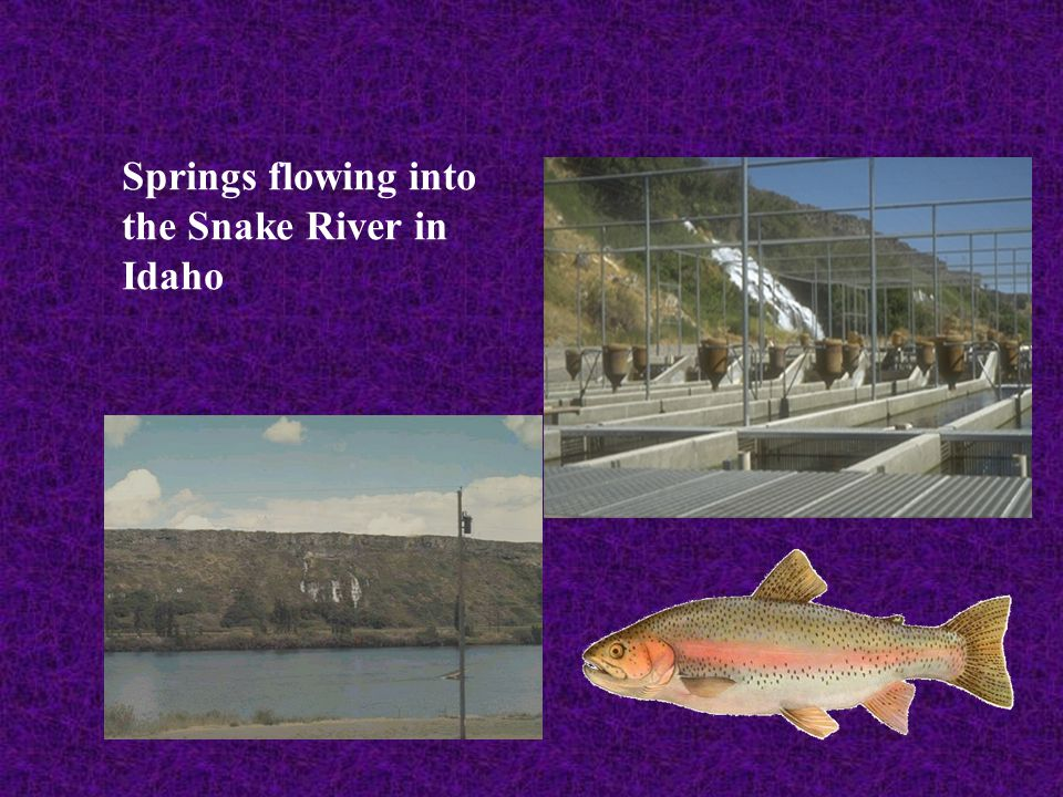 Springs flowing into the Snake River in Idaho