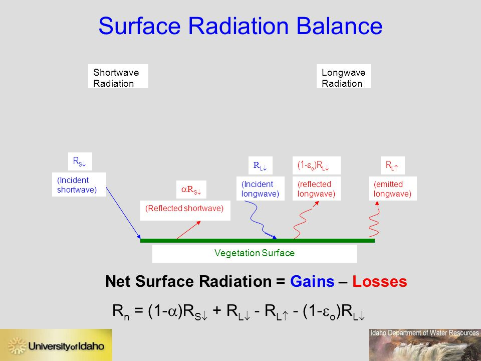 Surface Radiation Balance