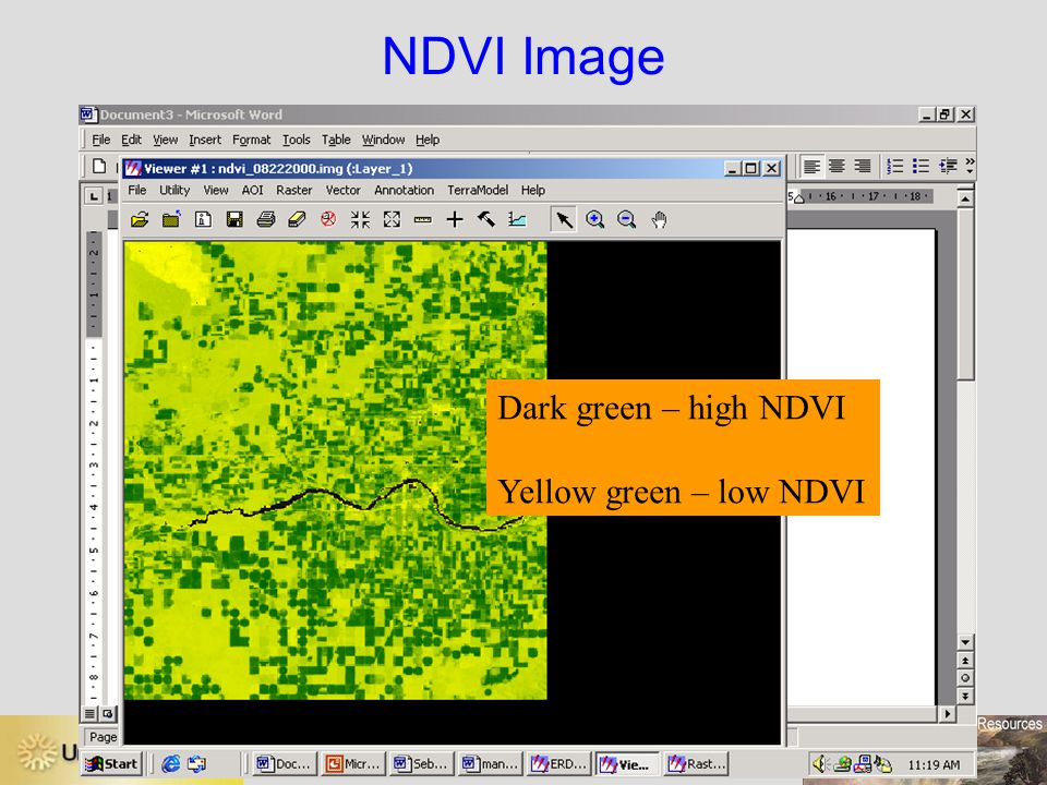 NDVI Image Dark green – high NDVI Yellow green – low NDVI