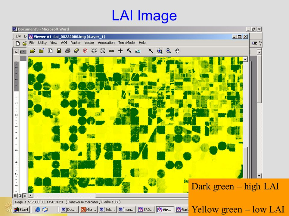 LAI Image Dark green – high LAI Yellow green – low LAI