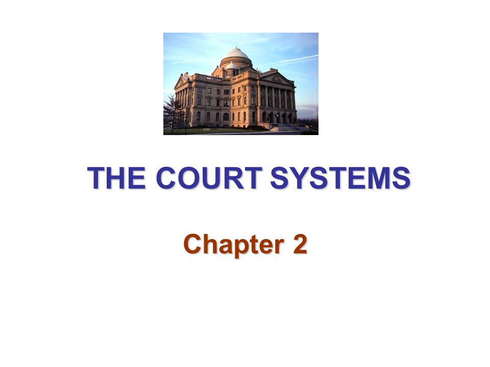 THE COURT SYSTEMS Chapter 2