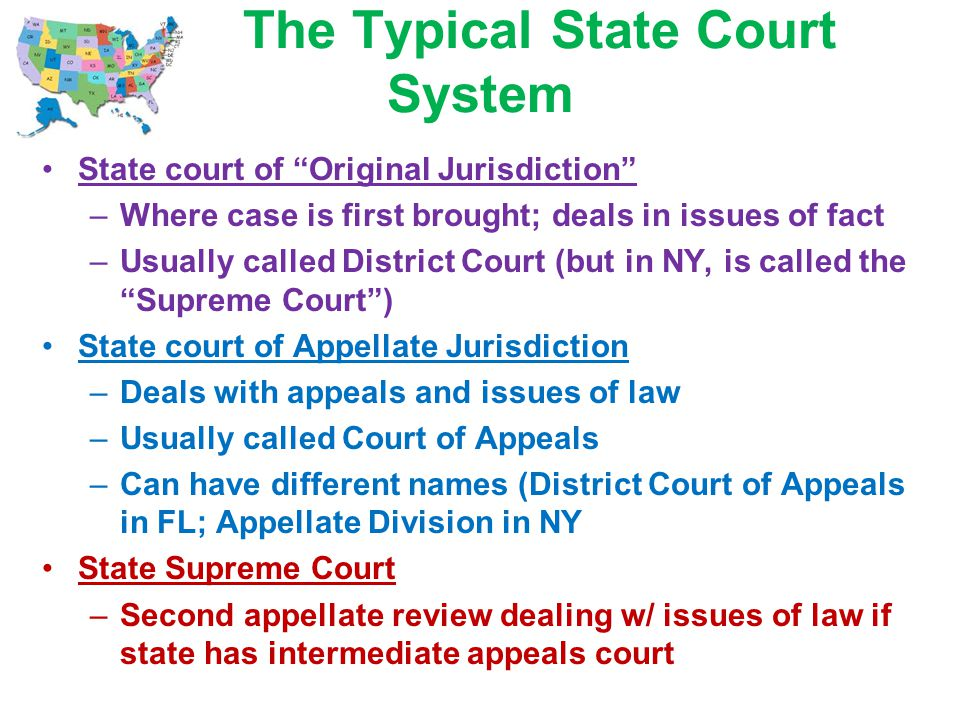 The Typical State Court System