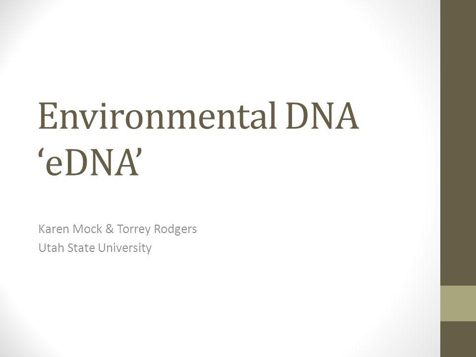 Environmental DNA 'eDNA'