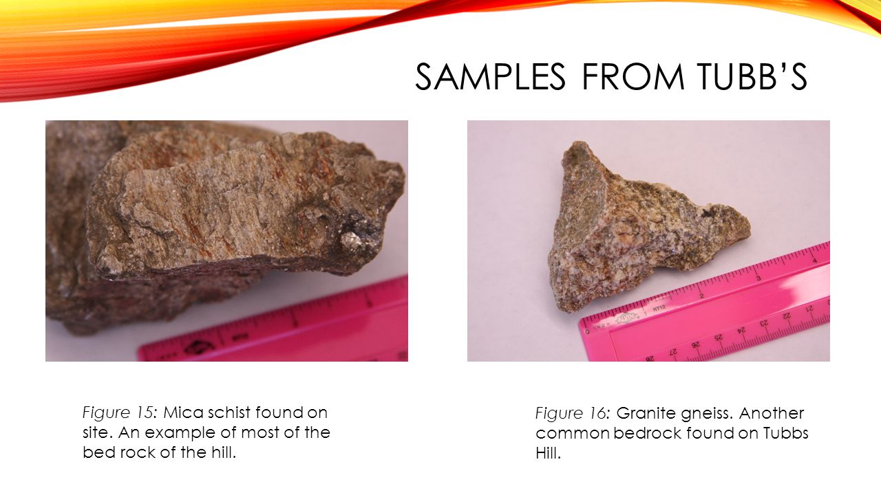 SAMPLES FROM TUBB'S Figure 15: Mica schist found on site. An example of most of the bed rock of the hill.