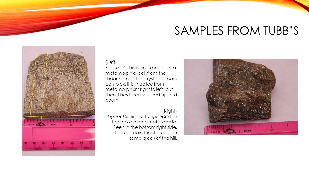 SAMPLES FROM TUBB'S (Left)