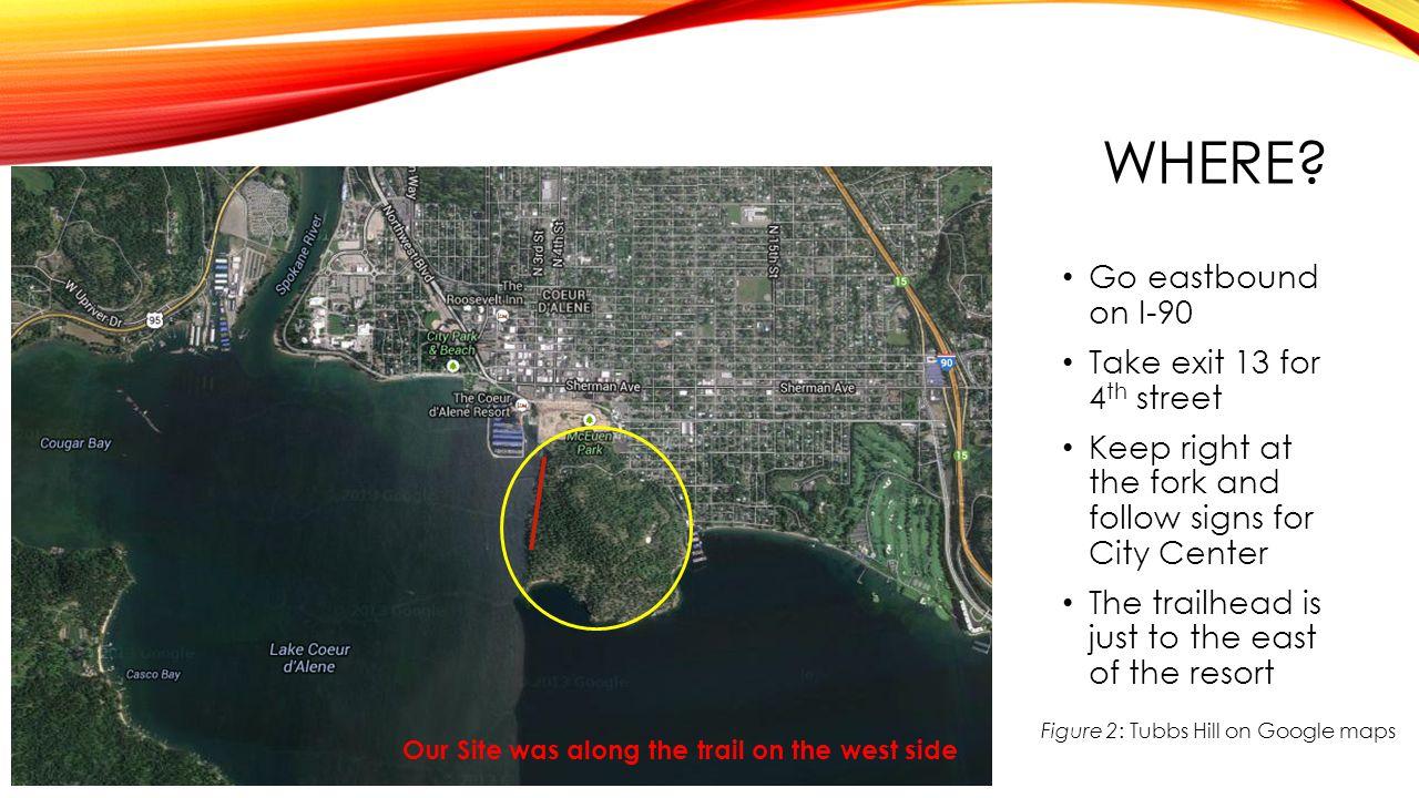 Figure 2: Tubbs Hill on Google maps